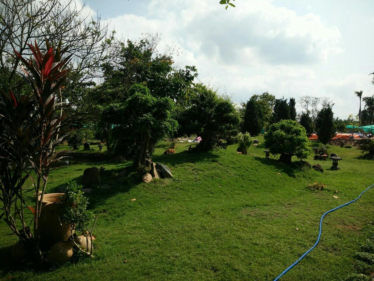 đất vườn nhà vườn long phước
