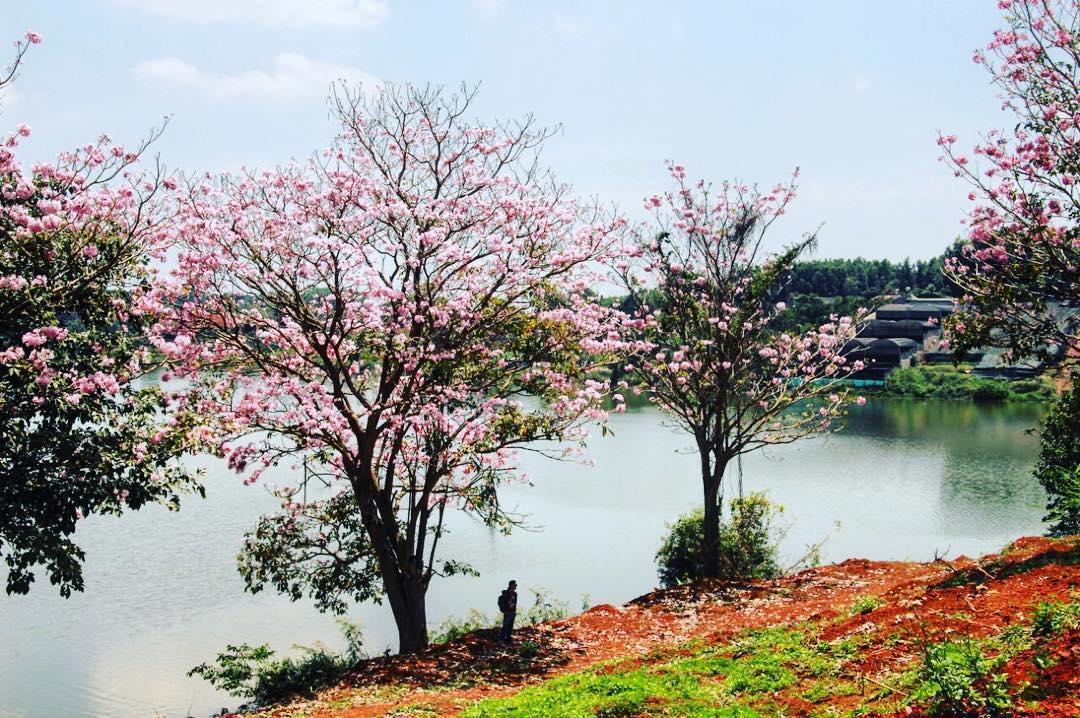 Bảo Lộc Riverside Novaland