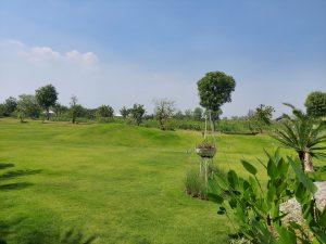 Sốt đất Long Phước, đất vườn sinh thái long phước