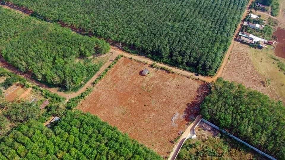 Bán đất view hồ Đá Bàng